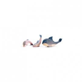 Delphin, Kopf tief