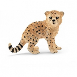 Schleich - World of Nature - Wild Life - Afrika - Gepardenbaby