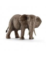 Schleich - World of Nature - Wild Life - Afrika - Afrikanische Elefantenkuh