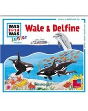 Tessloff - Was ist Was Junior CD - Wale und Delfine
