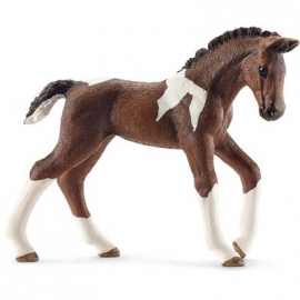 Schleich - World of Nature - Farm Life - Pferde - Trakehner Fohlen