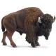 Schleich - World of Nature - Wild Life - Amerika - Bison