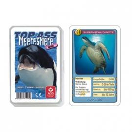 ASS Altenburger Spielkarten - TOP ASS Quartett Meerstiere