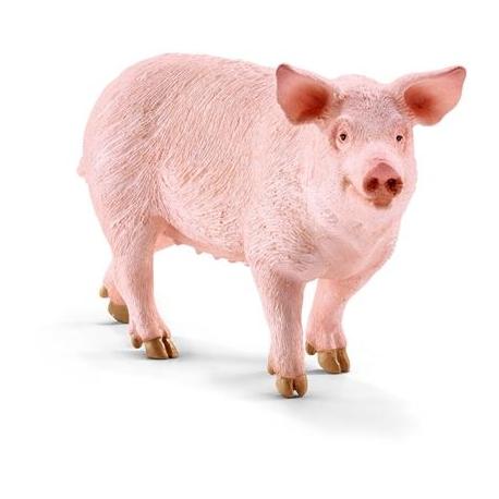 Schleich - World of Nature - Farm Life - Bauernhoftiere - Schwein