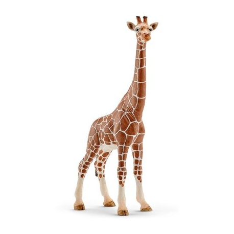 Schleich - World of Nature - Wild Life - Afrika - Giraffenkuh
