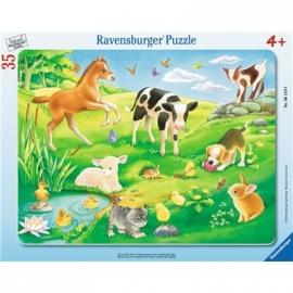 Ravensburger Puzzle - Rahmenpuzzle - Tiere auf der Wiese, 35 Teile