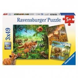 Ravensburger Puzzle - Tiere der Erde, 3 x 49 Teile
