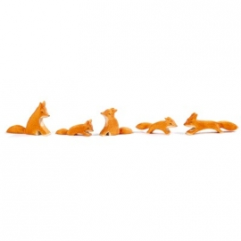 Fuchs, klein (schleichend)