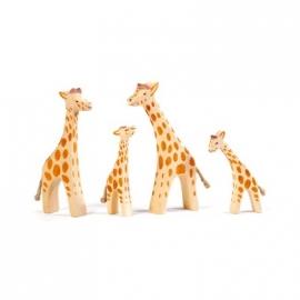 Giraffe, klein (Kopf hoch)