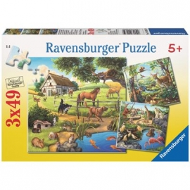 Ravensburger Puzzle - Wald-/Zoo-/Haustiere, 3 x 49 Teile