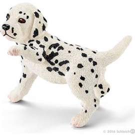 Schleich - World of Nature - Farm Life - Hunde - Dalmatiner Welpe