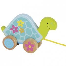 Susibelle - Ziehtier Schildkröte, Susibelle