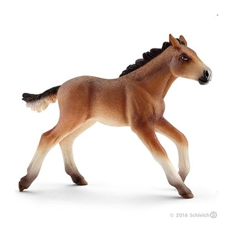 Schleich - World of Nature - Farm Life - Pferde - Mustang Fohlen