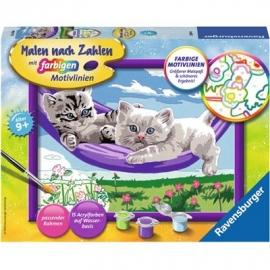 Ravensburger Spiel - Malen nach Zahlen mit farbigen Motivlinien - Kätzchen in der Hängematte