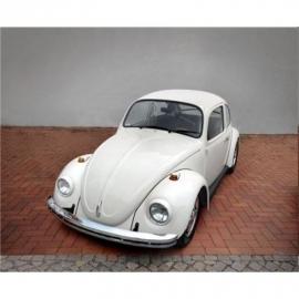 Revell - Model Set VW Beetle