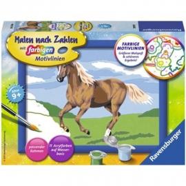 Ravensburger Spiel - Malen nach Zahlen mit farbigen Motivlinien - Stute Carla