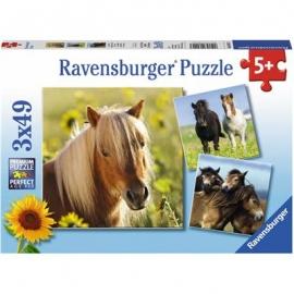 Ravensburger Puzzle - Liebe Pferde, 3x49 Teile