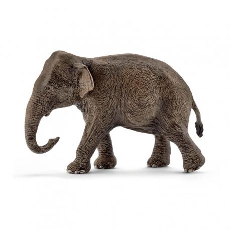 Asiatische Elefantenkuh