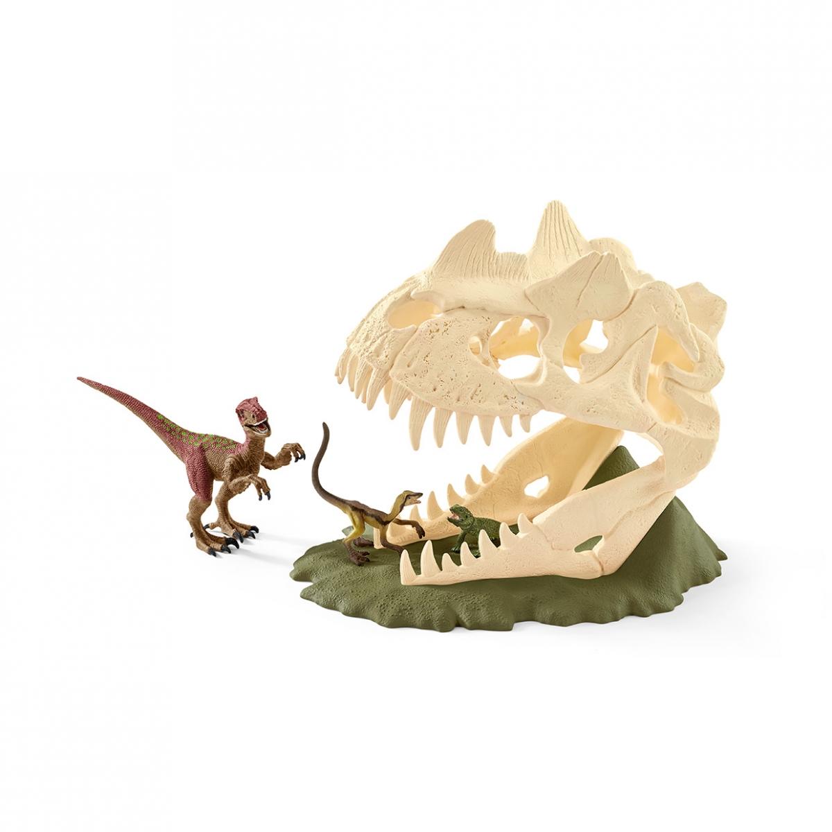 Große Schädelfalle mit Velociraptor