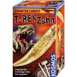KOSMOS - T-rex Zahn - Ausgrabung