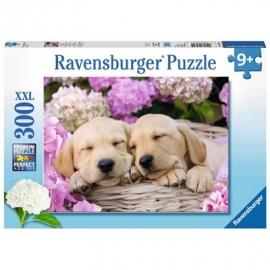 Ravensburger Puzzle - Süßes Hundefoto, 300 Teile