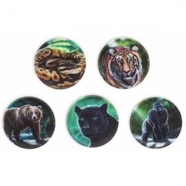 Klettie-Sets (5-tlg.) Dschungel Dschungel