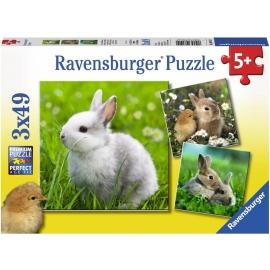 Ravensburger Puzzle - Niedliche Häschen, 49 Teile
