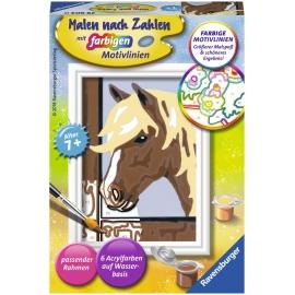 Ravensburger Spiel - Malen nach Zahlen mit farbigen Motivlinien - Daisy