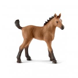 Schleich Horse Club 13854 Quarter Horse Fohlen