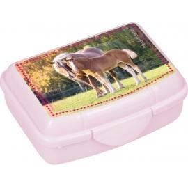 Mini-Snackbox  Pferdefreunde, sort.