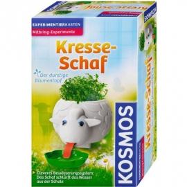 KOSMOS - Kresse Schaf