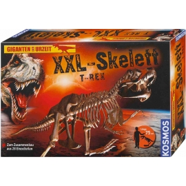 KOSMOS - XXL-Skelett
