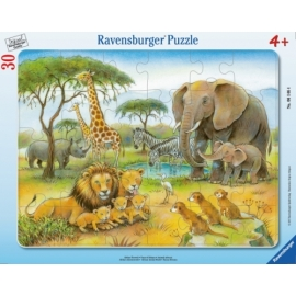 Ravensburger 061464 Puzzle Dschungeltiere 30-48 Teile
