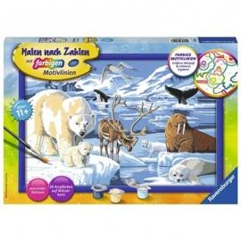 Ravensburger Spiel - Malen nach Zahlen - Tiere der Arktis