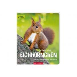 So lebt das Eichhörnchen (Nature Zoom)