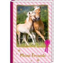 Freundebuch: Pferdefreunde - Stute mit Fohlen (pink)