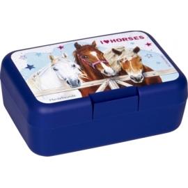 Butterbrotdose Pferdefreunde (blau)