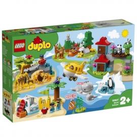 LEGO® Duplo 10907 Duplo Conf. 4