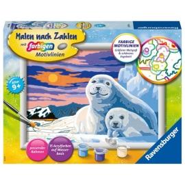 Ravensburger 28779 Malen nach Zahlen Niedliche Robben
